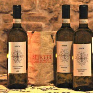 vernaccia di san Giminiano vena di vino