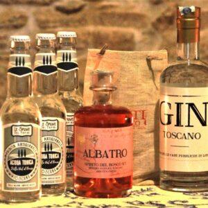 Gin Tonic del bosco Vena di Vino